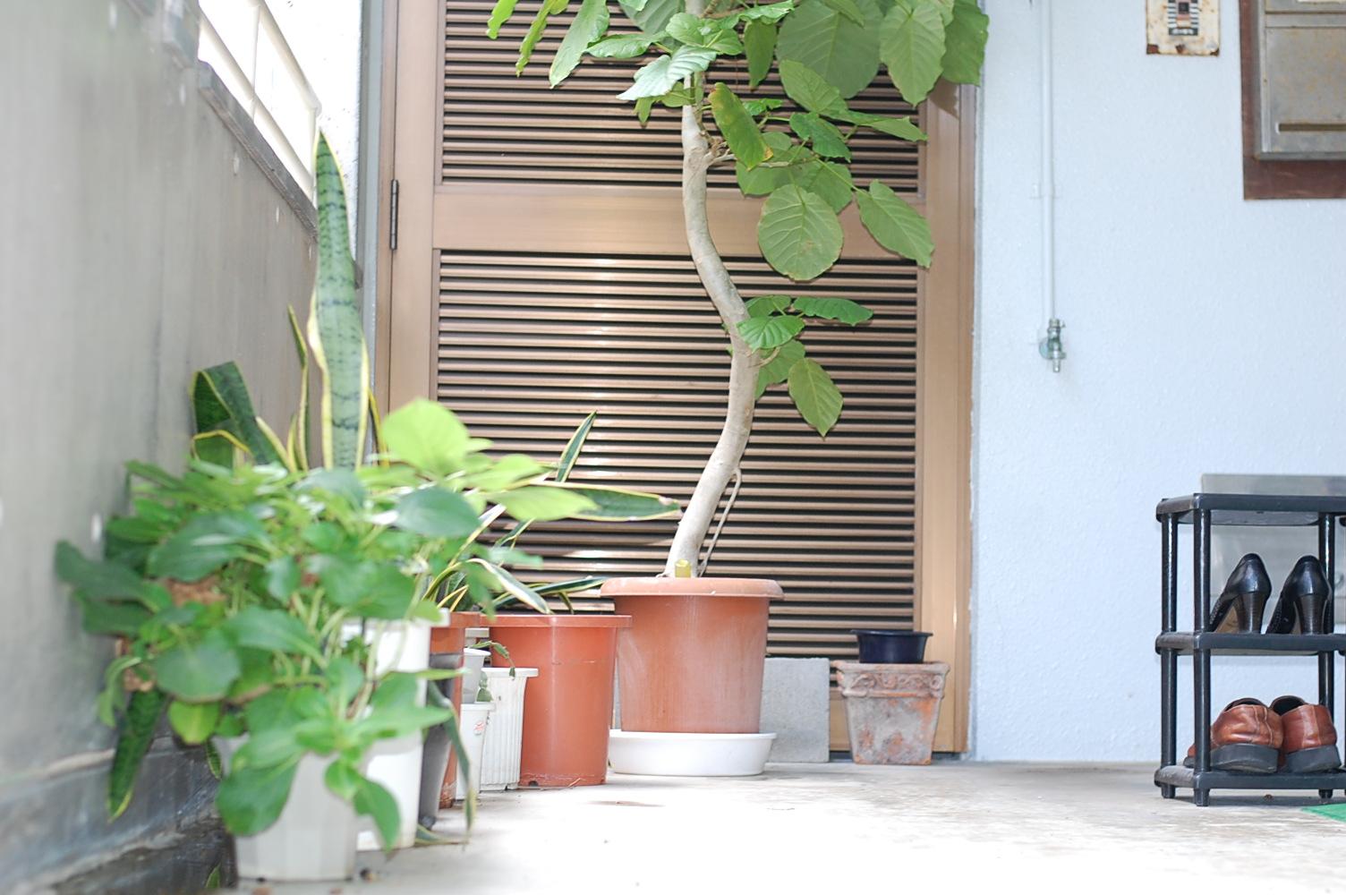 植木鉢-江尻事務所